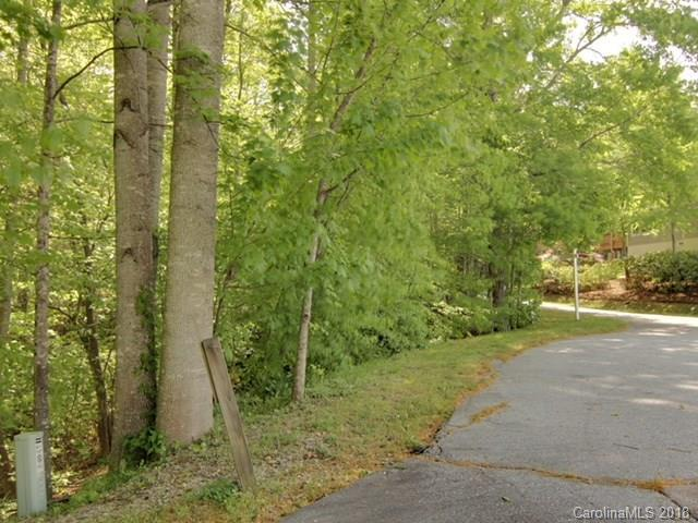 49 Waterwood Lane, Hendersonville, NC 28739 (#3389089) :: Exit Mountain Realty