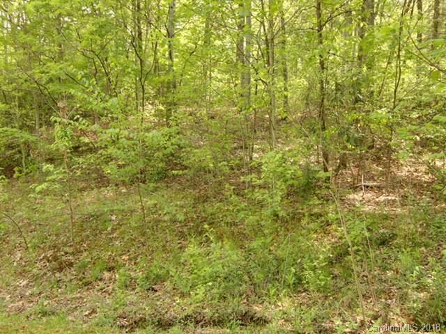 00000 Waterwood Lane, Hendersonville, NC 28739 (#3389098) :: Exit Mountain Realty