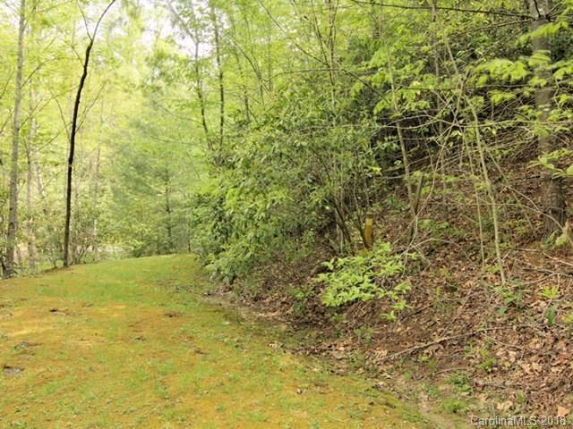 89 Waterwood Lane, Hendersonville, NC 28739 (#3389103) :: LePage Johnson Realty Group, LLC