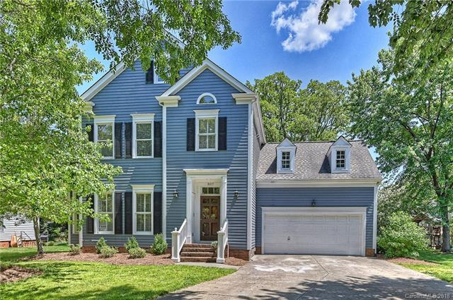 807 Bruff Court, Charlotte, NC 28270 (#3389411) :: RE/MAX Metrolina