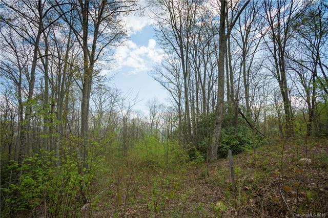 659 Rockmont Road C5, Waynesville, NC 28785 (#3389933) :: Puffer Properties