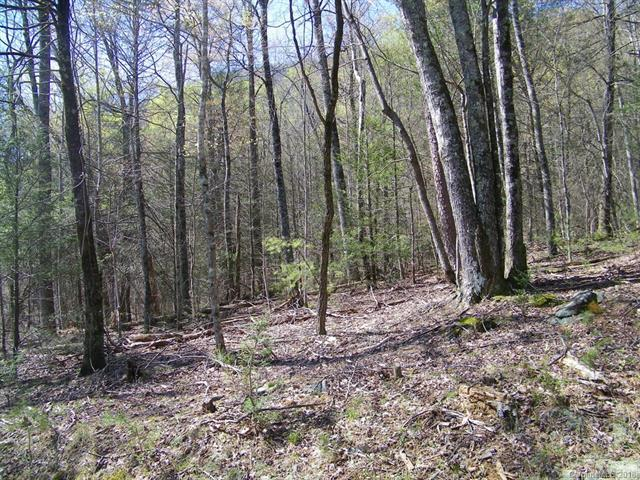 LOT 234 Quail Ridge Road, Lake Lure, NC 28746 (#3389968) :: Caulder Realty and Land Co.