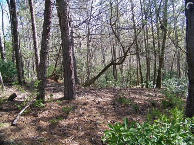 LOT 182 Weaver Lane, Lake Lure, NC 28746 (#3390312) :: Caulder Realty and Land Co.