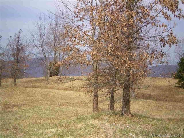 00 Ole Plantation Drive, Rutherfordton, NC 28139 (#3390962) :: Puffer Properties