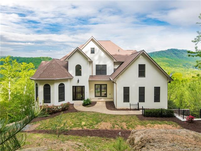 61 Mcintyre Drive, Asheville, NC 28803 (#3391231) :: Team Southline