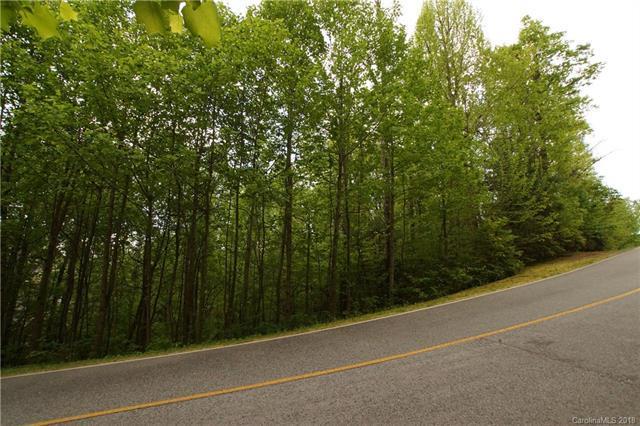 129 Pinnacle Peak Lane, Flat Rock, NC 28731 (#3391242) :: RE/MAX RESULTS