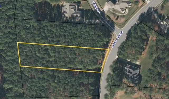 2357 Capes Cove Drive #331, Sherrills Ford, NC 28673 (#3391454) :: The Ramsey Group