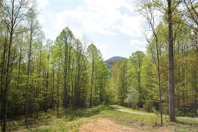 17 Cataloochee Lane #17, Waynesville, NC 28785 (#3391475) :: Exit Mountain Realty