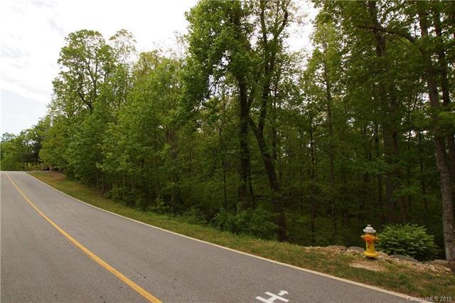 134 Pinnacle Peak Lane, Flat Rock, NC 28731 (#3391503) :: RE/MAX RESULTS