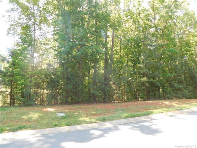 1513 Reflection Pointe Boulevard, Belmont, NC 28012 (#3391517) :: Robert Greene Real Estate, Inc.