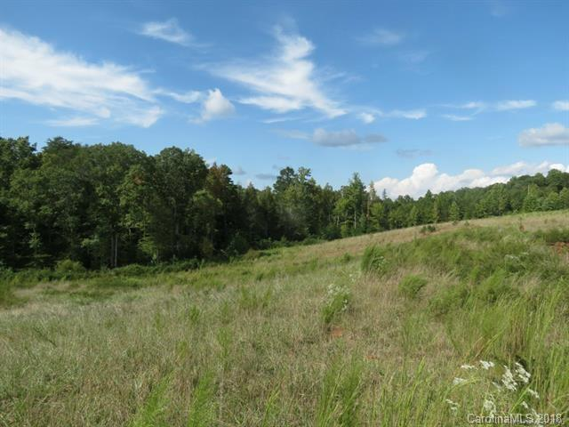 12 AC Mission Road, York, SC 29745 (#3391773) :: Phoenix Realty of the Carolinas, LLC