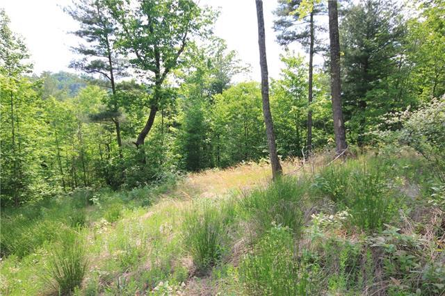 Lot 528 Roca Vista Drive #528, Lenoir, NC 28645 (#3391949) :: Exit Mountain Realty
