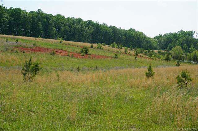 20 AC Mission Road, York, SC 29745 (#3392023) :: Mossy Oak Properties Land and Luxury
