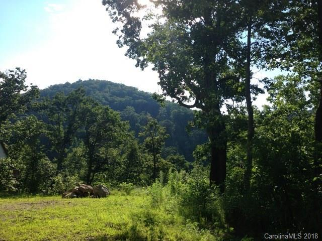 32 Lila Lane, Clyde, NC 28721 (#3392179) :: Miller Realty Group