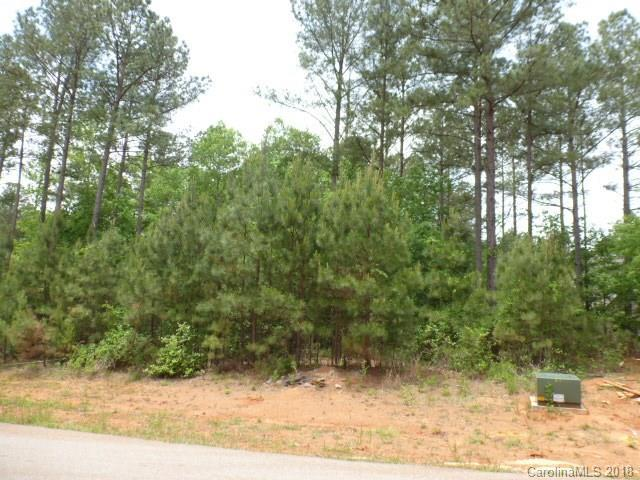 4046 Persimmon Road, Lancaster, SC 29720 (#3392306) :: Roby Realty