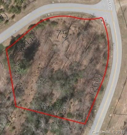 75 Mountain Elder Lane #75, Hendersonville, NC 28739 (#3392604) :: Puffer Properties