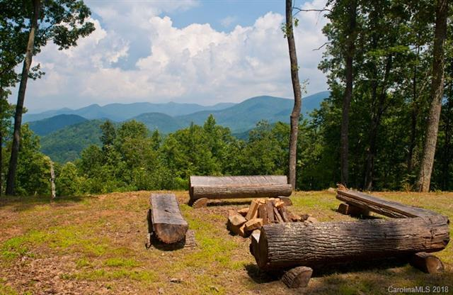 0000 Mundy Cove Road, Weaverville, NC 28787 (#3392708) :: Puffer Properties