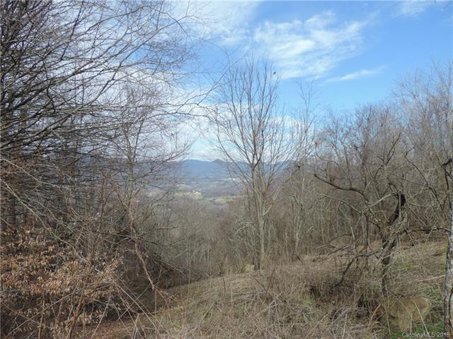 Lot 4,11,12,13 Lothlorian Road, Waynesville, NC 28786 (#3392976) :: RE/MAX Four Seasons Realty