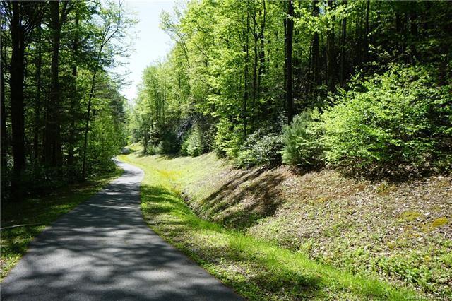 TBD Austin Drive #7, Lenoir, NC 28645 (#3393015) :: Exit Mountain Realty