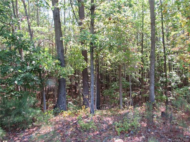 117 Harvest Lane, Mooresville, NC 28117 (#3393506) :: Cloninger Properties