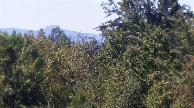 1726 Fota Lyruma Lane, Morganton, NC 28655 (#3394150) :: Exit Mountain Realty