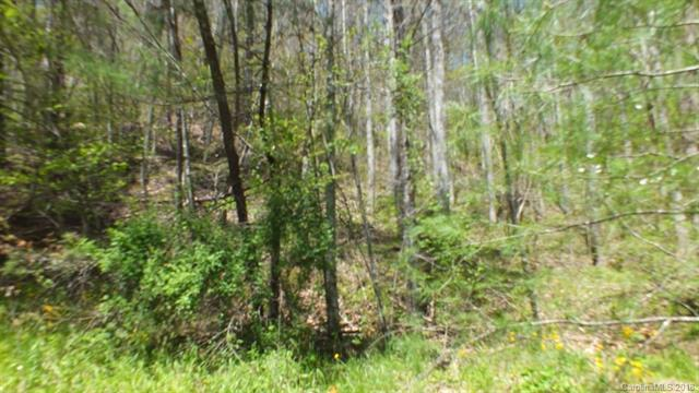 Lot 24 Freedom Lane Lot 24, Hot Springs, NC 28743 (#3394319) :: Puffer Properties