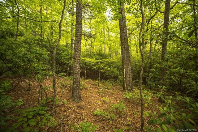 TBD Rolling Ridge Trail #18, Black Mountain, NC 28711 (#3394404) :: Puffer Properties