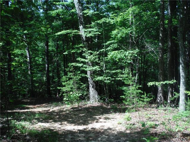0 Cane Creek Mountain Road 11B, Union Mills, NC 28167 (#3394950) :: Puffer Properties