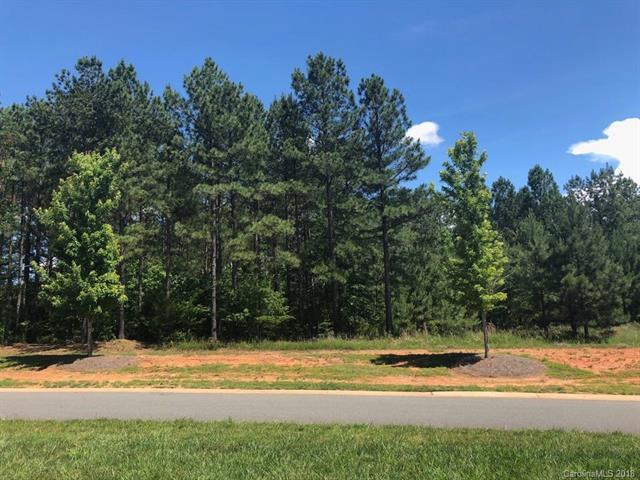 1325 Reflection Pointe Boulevard, Belmont, NC 28012 (#3395186) :: Leigh Brown and Associates with RE/MAX Executive Realty