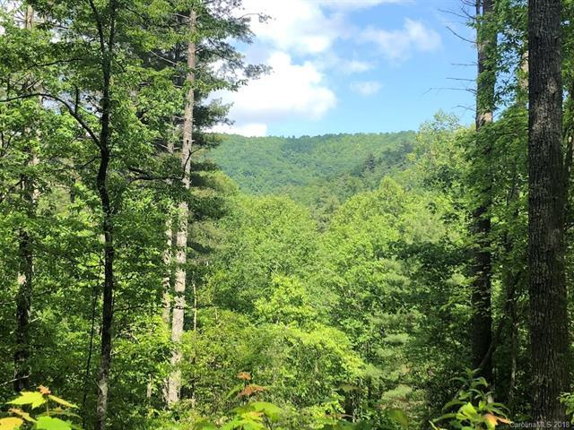 Lot 23 Camellia Trail #23, Rosman, NC 28772 (#3395216) :: The Temple Team
