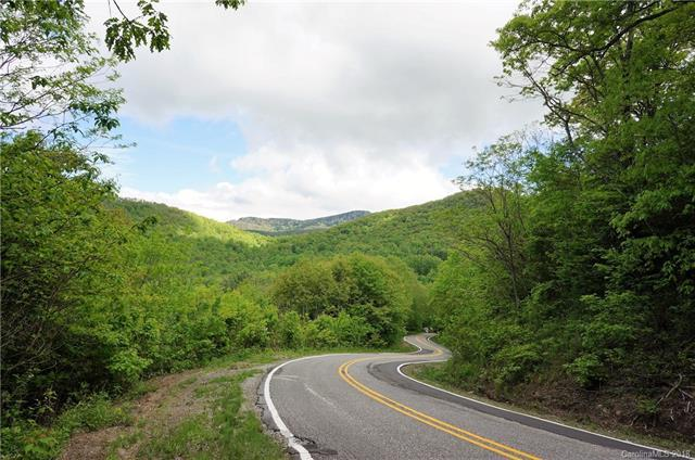 TBD Charleys Creek Road, Tuckasegee, NC 28783 (#3395368) :: Leigh Brown and Associates with RE/MAX Executive Realty