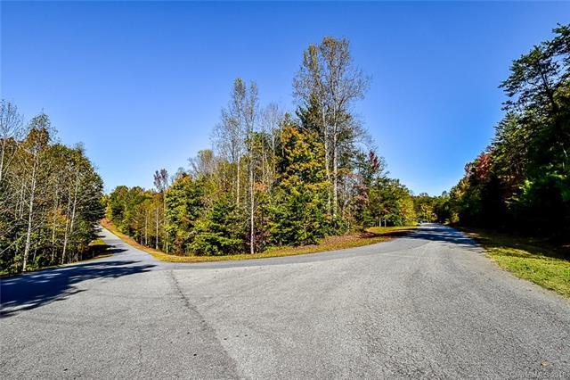 7877 Long Bay Parkway, Catawba, NC 28609 (#3395383) :: MartinGroup Properties