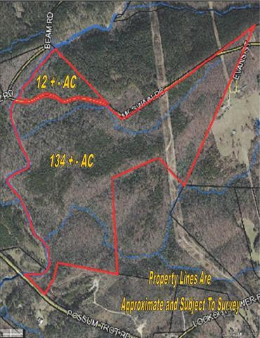 134 AC Possum Trot Road, Blacksburg, SC 29702 (#3395436) :: Mossy Oak Properties Land and Luxury