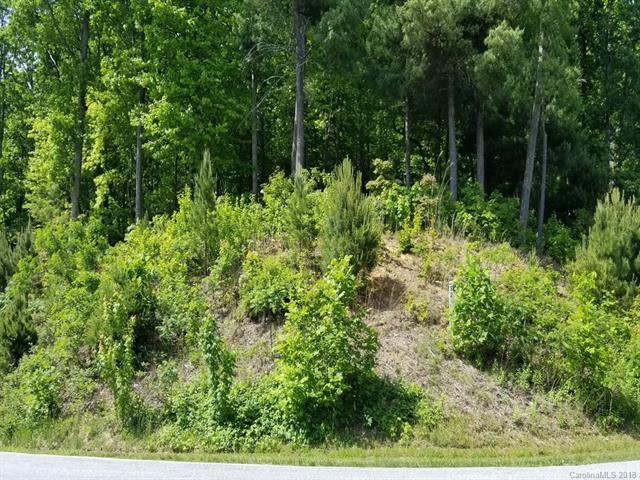 372 Hollybrook Drive S-2R, Flat Rock, NC 28731 (#3395588) :: Leigh Brown and Associates with RE/MAX Executive Realty