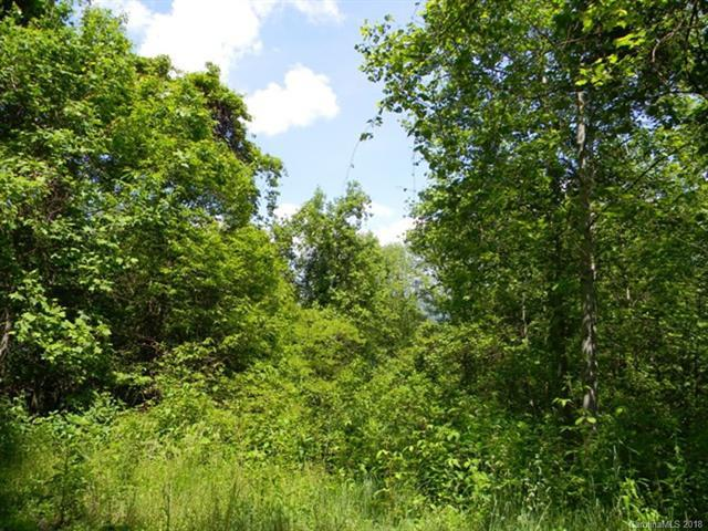 Lot 621 Kitty Lane, Waynesville, NC 28785 (#3395719) :: Caulder Realty and Land Co.