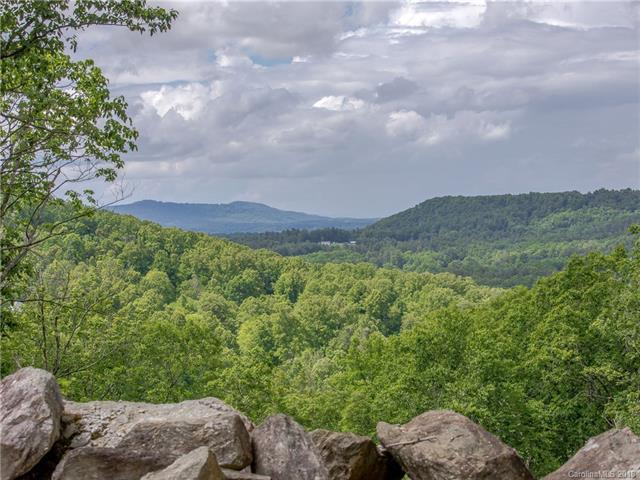 9999 Winterview Trail, Hendersonville, NC 28739 (#3395779) :: Puffer Properties