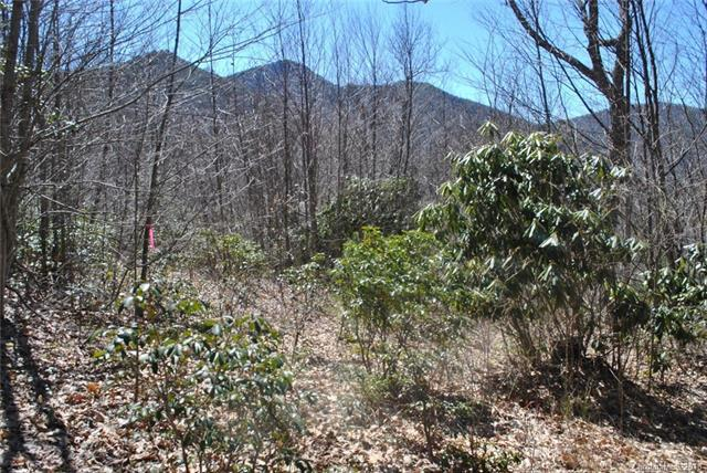00 Chickadee Lane, Maggie Valley, NC 28751 (#3396019) :: TeamHeidi®