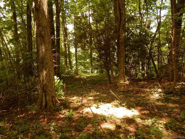 00-Off Blue Jay Loop, Maggie Valley, NC 28751 (#3396123) :: LePage Johnson Realty Group, LLC