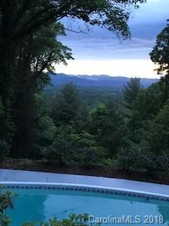 12 Horizon Hill Road, Asheville, NC 28804 (#3396438) :: The Andy Bovender Team