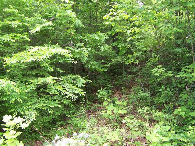 Lot 93 Denman Drive #93, Lake Junaluska, NC 28745 (#3396524) :: LePage Johnson Realty Group, LLC