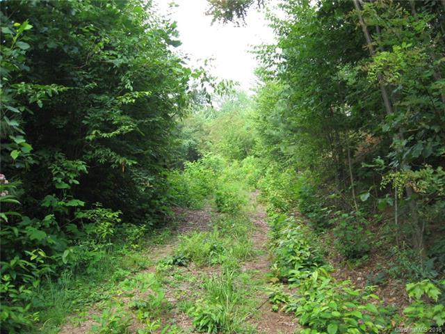 14 Junebug Trail #14, Waynesville, NC 28785 (#3396966) :: Puma & Associates Realty Inc.