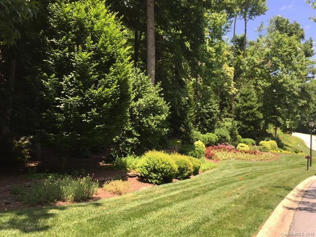 559 Hagen Drive #1, Hendersonville, NC 28739 (#3397458) :: RE/MAX Four Seasons Realty