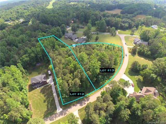 000 Raymonds Creek Drive #12, China Grove, NC 28023 (#3397687) :: Exit Mountain Realty