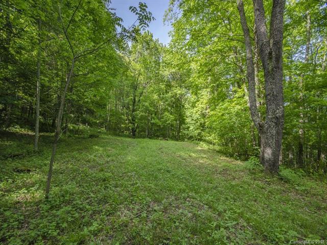 Lot 48 Divit Road, Waynesville, NC 28785 (#3398473) :: Exit Mountain Realty
