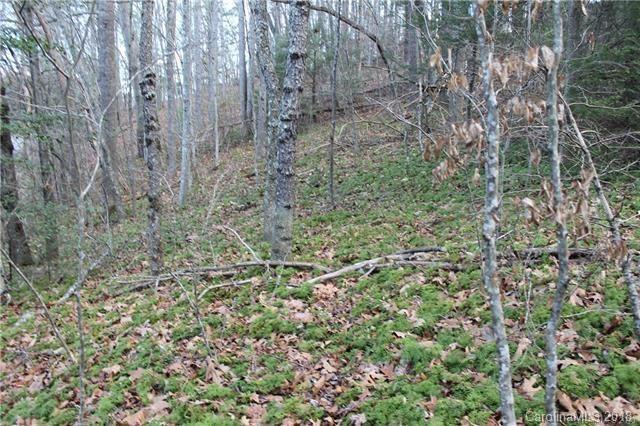 223 Bearwallow Trail, Leicester, NC 28748 (#3399186) :: Puffer Properties