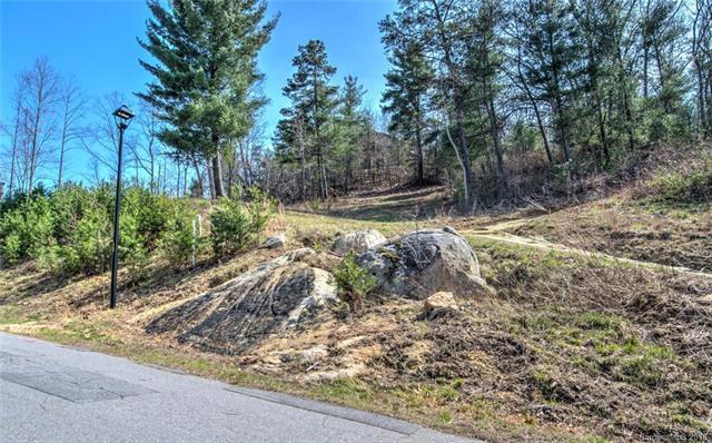 81 Magnolia Farms Drive #15, Asheville, NC 28806 (#3399693) :: Puffer Properties