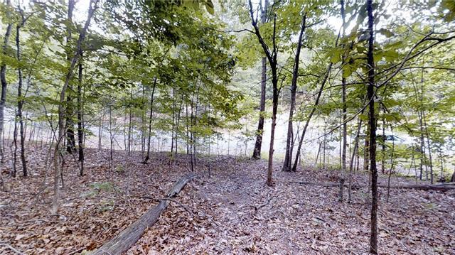 TBD Woodland Circle #199, Lake Lure, NC 28746 (#3399775) :: Puffer Properties