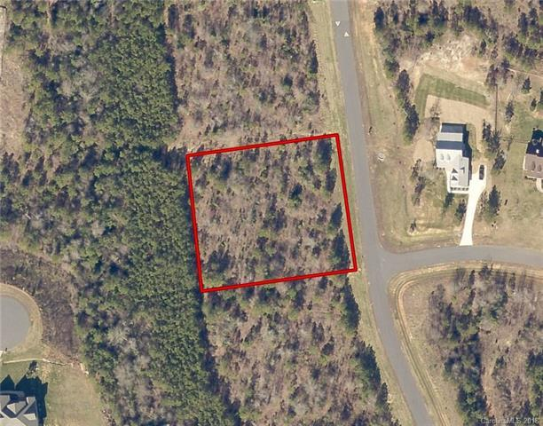 1592 Restless One Lane #128, Rock Hill, SC 29730 (#3399946) :: LePage Johnson Realty Group, LLC