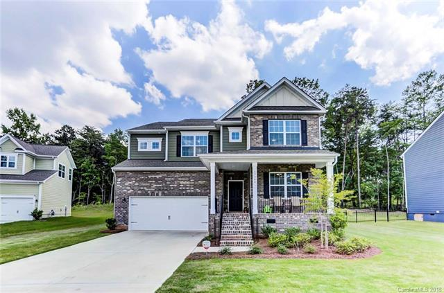 17344 Belmont Stakes Lane, Charlotte, NC 28278 (#3400589) :: Stephen Cooley Real Estate Group