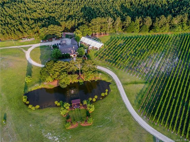 21904 Riverton Road, Wagram, NC 28396 (#3400907) :: Carlyle Properties